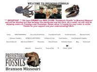 indiana9fossils.com thumbnail